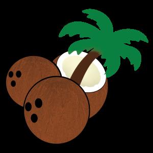 SWFL Coconuts Logo